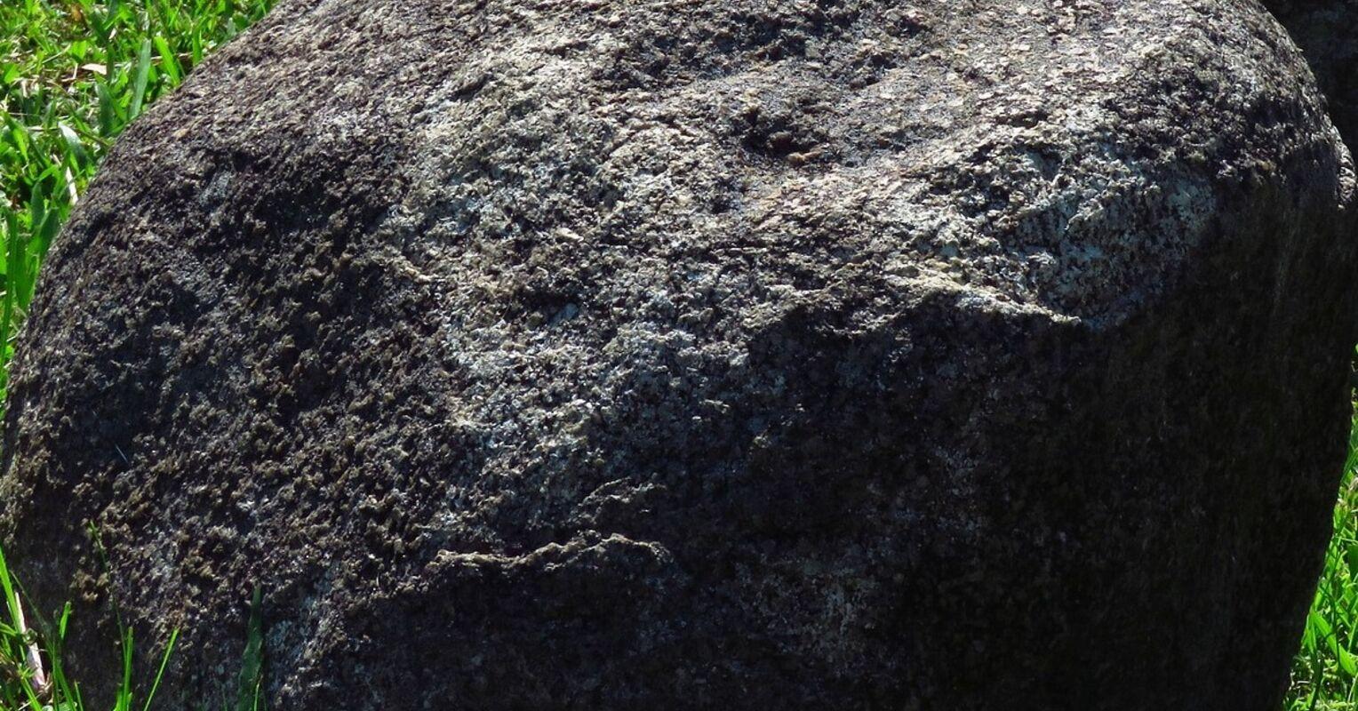 El precio y los beneficios de una estrategia de Gray Rock