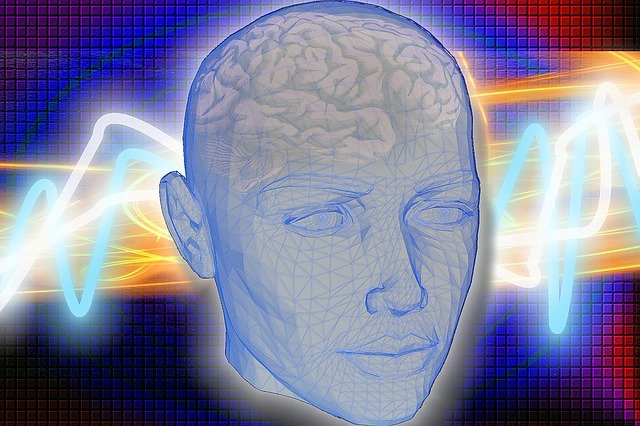 head 1058432 640